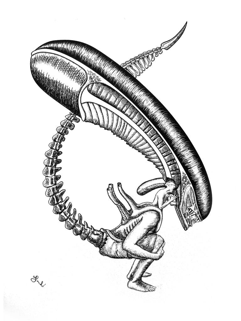 alien-jankosh-drawing